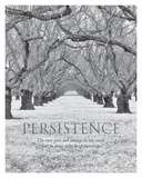 Persistence Posters by Dennis Frates