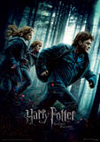 Harry Potter (Deathly Hallows Part 1) Movie Poster Lámina maestra