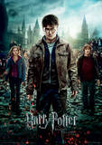 Harry Potter (Deathly Hallows Part 2) Movie Poster Lámina maestra