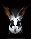 Rabbit Rocks Plakat af Robert Farkas