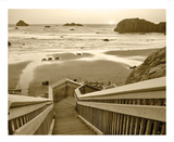 Pathway To Beach Print by Dennis Frates