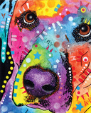 Closeup Labrador Posters van Dean Russo