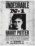 Harry Potter (Undesirable No1) Movie Poster Impressão original