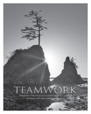 Teamwork Print by Dennis Frates