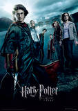 Harry Potter (Goblet Of Fire) Movie Poster Lámina maestra