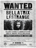 Harry Potter (Bellatrix Wanted) Movie Poster Impressão original
