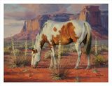 Navajo Pony Prints by Jack Sorenson