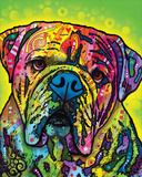 Hey Bulldog Print by Dean Russo