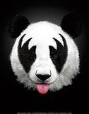 Panda Rocks Plakater af Robert Farkas