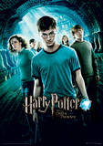 Harry Potter (Order Of The Phoenix) Movie Poster Masterprint