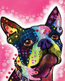 Boston Terrier Prints by Dean Russo