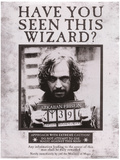 Harry Potter (Sirius Wanted) Movie Poster Impressão original