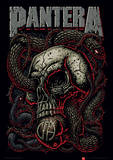 Pantera (Snake Eye) Music Poster Masterprint