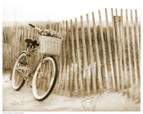 Bike by Beach Fence Prints