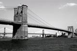 Brooklyn Bridge and Manhattan Bridge, Day Poster by Phil Maier