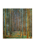 Tannenwald (Pine Forest), c.1902 Poster av Gustav Klimt