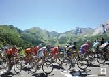 Le Tour De France (Les Alpes) Sports Photo Poster Lámina maestra