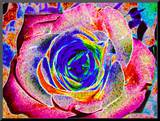 Rainbow-Colored Rose Mounted Print by Rich LaPenna
