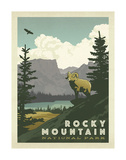 Rocky Mountain National Park Poster by  Anderson Design Group