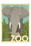 Zoo Elephant Art by  Anderson Design Group