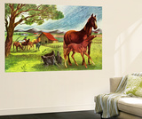 Horses - Jack & Jill Wall Mural by Virginia Mann