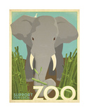 Zoo Elephant Prints by  Anderson Design Group