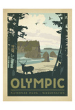 Olympic National Park, Washington Kunstdruck von  Anderson Design Group