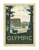 Olympic National Park, Washington Poster by  Anderson Design Group