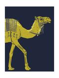 Camel Giclee Print