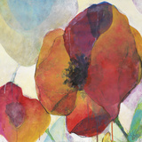 Poppy II Print by Doug Kennedy
