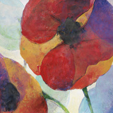 Poppy III Prints by Doug Kennedy
