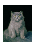Study of a Cat Giclee Print by Lilian Cheviot