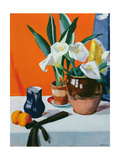 Arum Lilies Giclee Print by Francis Campbell Boileau Cadell