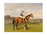 'Spearmint', Winner of the 1906 Derby, 1906 Giclee Print by Emil Adam