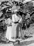 Peasant Woman, Jamaica, 1908-09 Photographic Print by Harry Hamilton Johnston