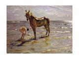 Bathing a Horse, 1905 Giclee Print by Valentin Aleksandrovich Serov