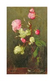 Roses Giclee Print by Marianne Stokes