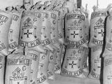 Sacks of Split Peas from Bishop Mills, 1955 Photographic Print