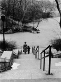 Central Park in Winter, c.1953-64 Photographic Print by Nat Herz