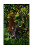 Picking Apples, c.1920 Giclee Print by Mabel Royds