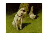 White Persian Cat and Jack Russell Giclee Print by Arthur Heyer