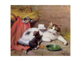 Cat with Kittens, 1924 Giclee Print by Leon-charles Huber