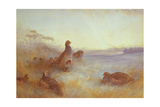 Partridges in Early Morning, 1910 Giclee Print by Archibald Thorburn