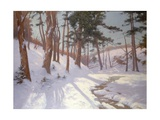 Winter Woodland with a Stream Giclee Print by James MacLaren
