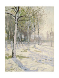 Poplars in the Snow Giclee Print by Alice Maud Fanner
