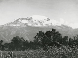 Mount Kilimanjaro, Tanzania, 1920 Fotografisk trykk av  English Photographer