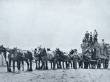 Wool Carrying Team, Western Australia, c.1900, from 'Under the Southern Cross - Glimpses of… Photographic Print by  Australian Photographer