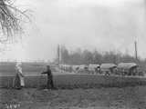 Line of Lorries on a Road, Somme, 1916 Photographic Print by Jacques Moreau