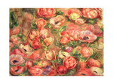 Bed of Anemones, 1901 Giclee Print by Pierre Auguste Renoir