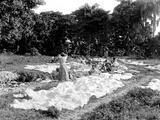 Washing Clothes, Haiti, 1908-09 Photographic Print by Harry Hamilton Johnston